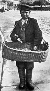 Pedlar